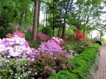Morrison Garden