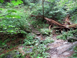 Stone steps to the Potomac overlook