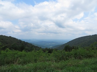 Jenkins Gap Overlook
