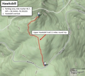 Hawksbill trail map
