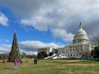 The Capitol Building with its Christmas Tree