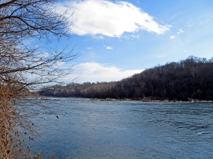 Rapids on the Potomac, looking downstream. I-495 bridge is just out of sight on the left.