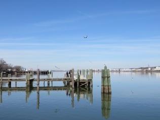 The Potomac River, looking upstream towards Washington DC
