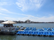 Paddleboats, with the Jefferson Memorial in the background.