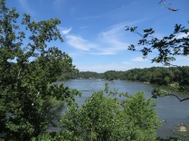 Potomac River overlook