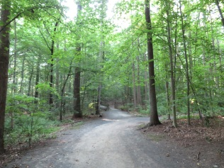 Daniel's Run Trail