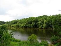 Lake Mercer, looking south