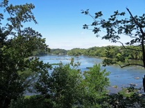 Potomac River overlook