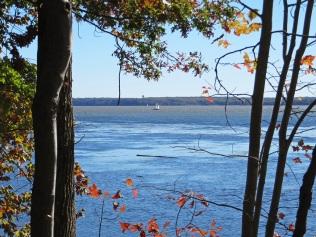 Sailboats on the Potomac