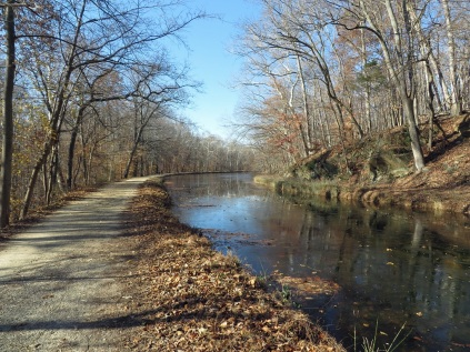The C&O Canal, iced over