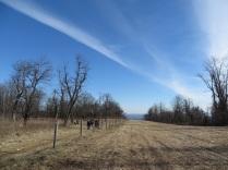 An open field