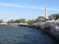 The Tidal Basin, with the Washington Monument in the background