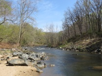 The Little Patuxent River