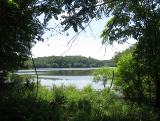 Lake Frank