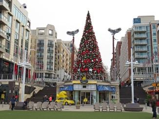 Christmas tree and more