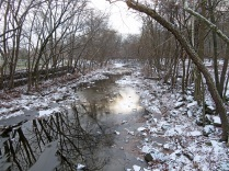Icy morning at Four Mile Run