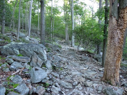 Rocky trail up Catoctin Mountain