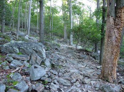 Rocky trail up Catoctin Mountain